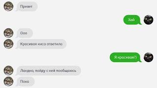 """""""Красивая"""" КОТОСМС (Серия - 60)"""