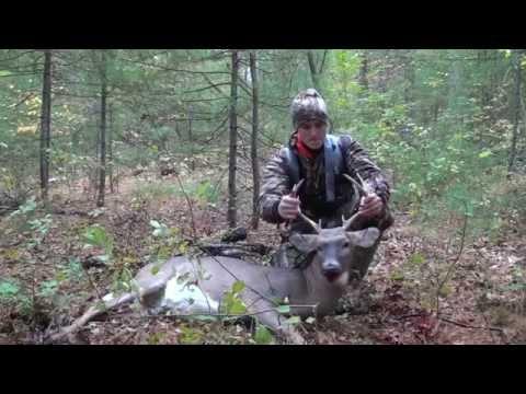 Early Season Massachusetts Archery Buck