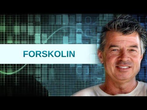 Forskolin (Coleus forskohlii)