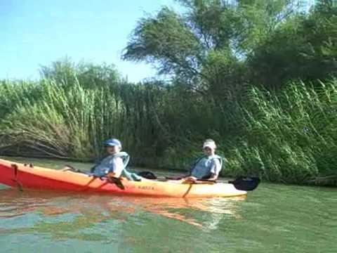 The Beauty of South Texas' Eco-tourism