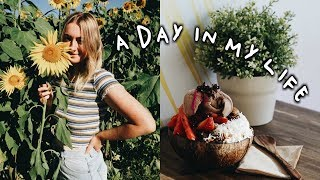 WHAT I ATE TODAY (Vlog), Life Update + Reducing Plastic Consumption!