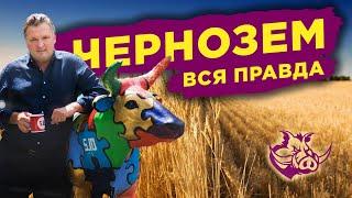 Правда о земле Украины / Сколько стоит земля? / Зачем нужен рынок земли?