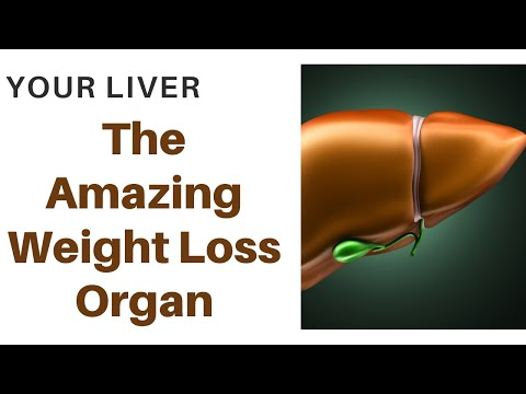 your-liver:-the-amazing-weight-loss-&-health-creating-organ