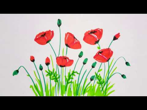 Poppy Flowers Drawing | Simple and Easy Flower Painting Tutorial For Beginners