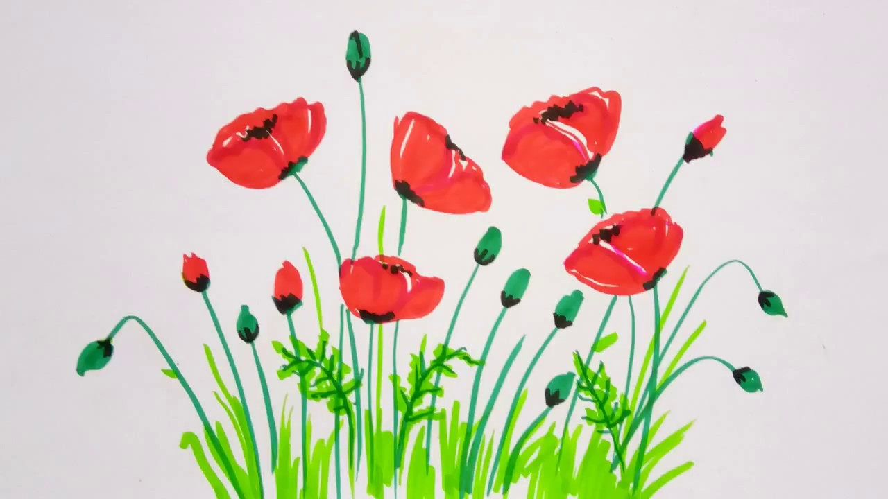 Poppy Flowers Drawing Simple And Easy Flower Painting Tutorial For