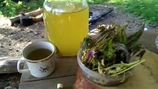 Сурица - древний солнечный напиток славянских богов