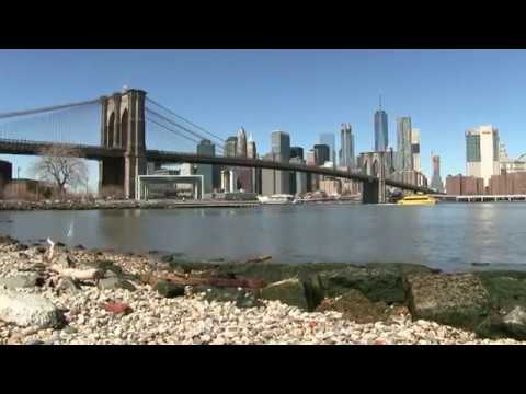 Guida del ponte di Brooklyn New York  YouTube