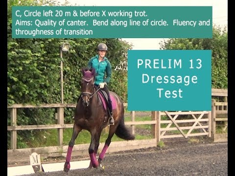 Learn The Prelim 13 Dressage Test