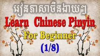 Best Free Beginner Chinese Youtube Video Playlist