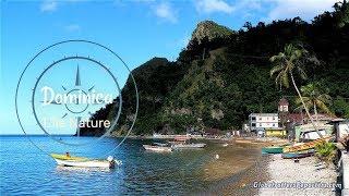 Dominica, l'île nature des Caraïbes 4K