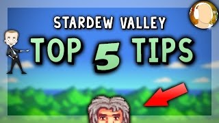 Stardew Valley | TOP 5 INTERMEDIATE TIPS Every Player Should Know