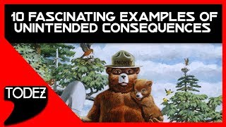 10 Fascinating Examples of Unintended Consequences