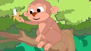 Minu Monkey Nursery Rhymes Popular Nursery Rhymes For Children Best Songs For Kids