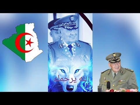 رئيس عبد المجيد تبون يصلي صلاة علي الشاهيد أحمد ڨايد صالح