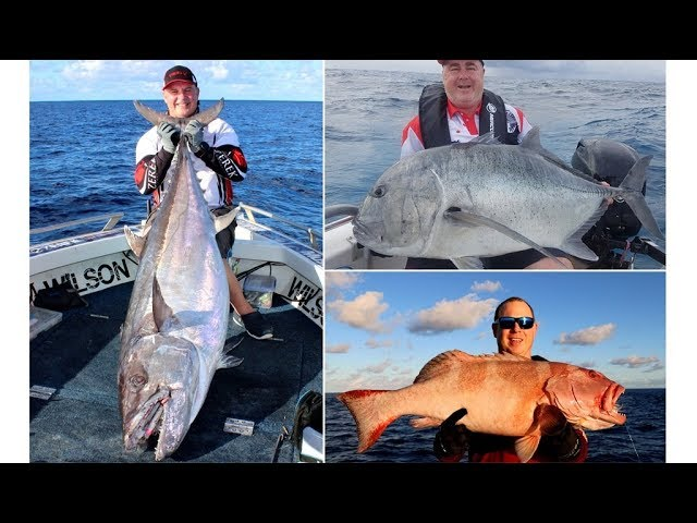 Fishing Kenn Reef with Wilson Fishing on Big Cat Reality Charters
