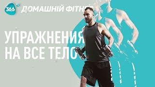 Топ 5 Упражнений на Все ТЕЛО: Похудение, Рельеф, Здоровье | Дмитрий Мамонтов