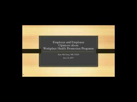 Employer and Employee Opinions About Workplace Health Promotion Programs