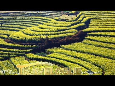 Travelogue— Licang: Land of Mystery 3 07/30/2016 | CCTV