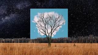 Fink - 'Bloom Innocent - Single Version' (Official Audio)