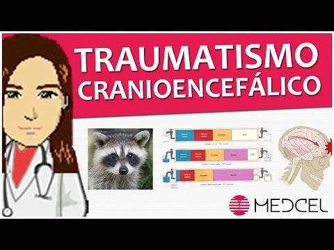 Introdução ao Traumatismo Cranioencefálico (TCE) + Sorteio (Medcel)