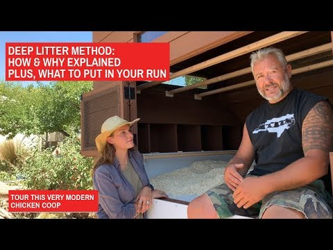 Deep Litter Method Explained! Plus What To Put In Your Run. Santa Fe Modern Chicken Coop