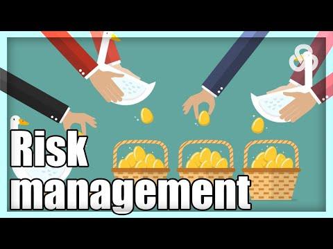 Waarom is Risico spreiding zo Belangrijk