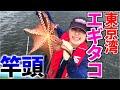 【エギタコ釣り】祝竿頭♪豚肉巻いて爆釣 餌木タコ釣り 東京湾 黒川本家