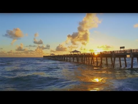 Discover The Palm Beaches, The Perfect Place