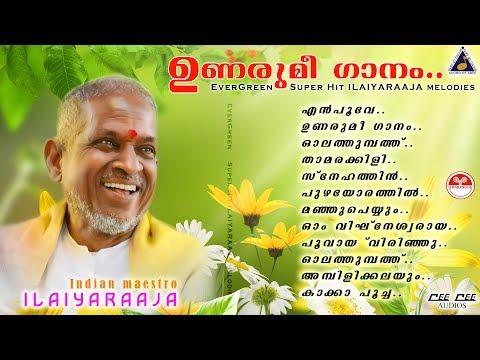 Unarumee Gaanam | Ilaiyaraaja |Dasettan|Janaki|Venugopal Evergreen super hit songs cinemapaattukal