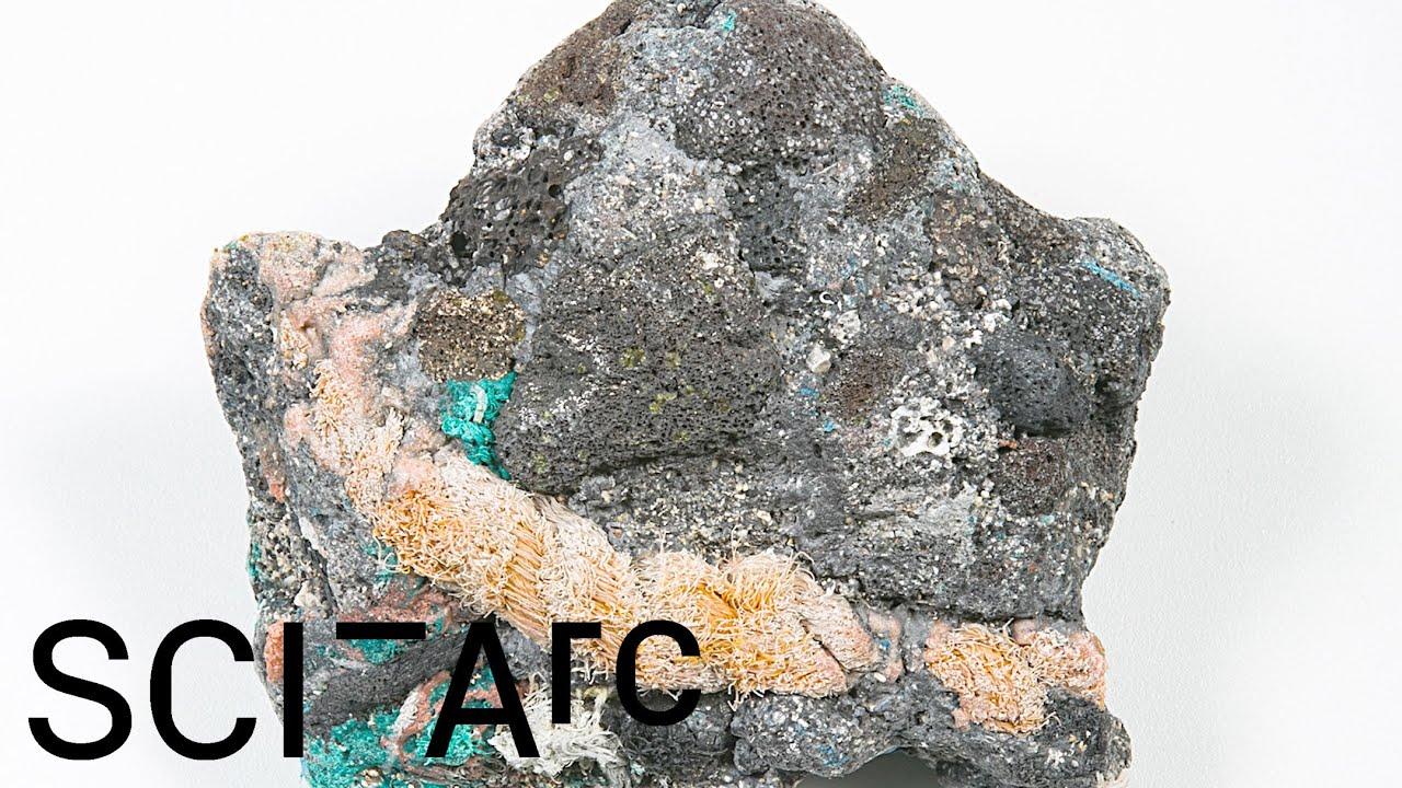 Kelly Jazvac  and  Patricia Corcoran: Plastic Entanglements