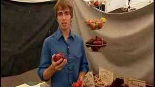Farmers' Market Tv Tips (4 Of 7): Storing Tomatoes/potatoes.