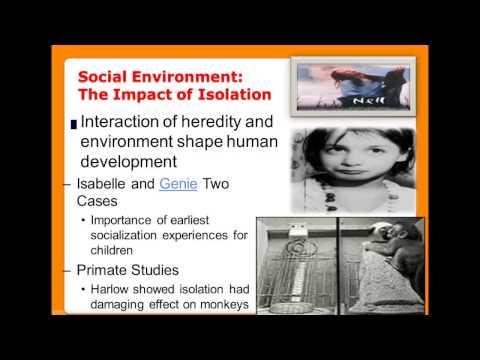 Chapter 4- Socialization- Part 1