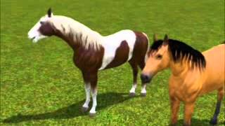 Sims 3 ~ Spirit Stallion of the Cimarron ~ Part 4