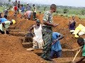 watch he video of Sierra Leone mudslide 6th international disaster: 1028 dead, Workers digging graves for mass burial