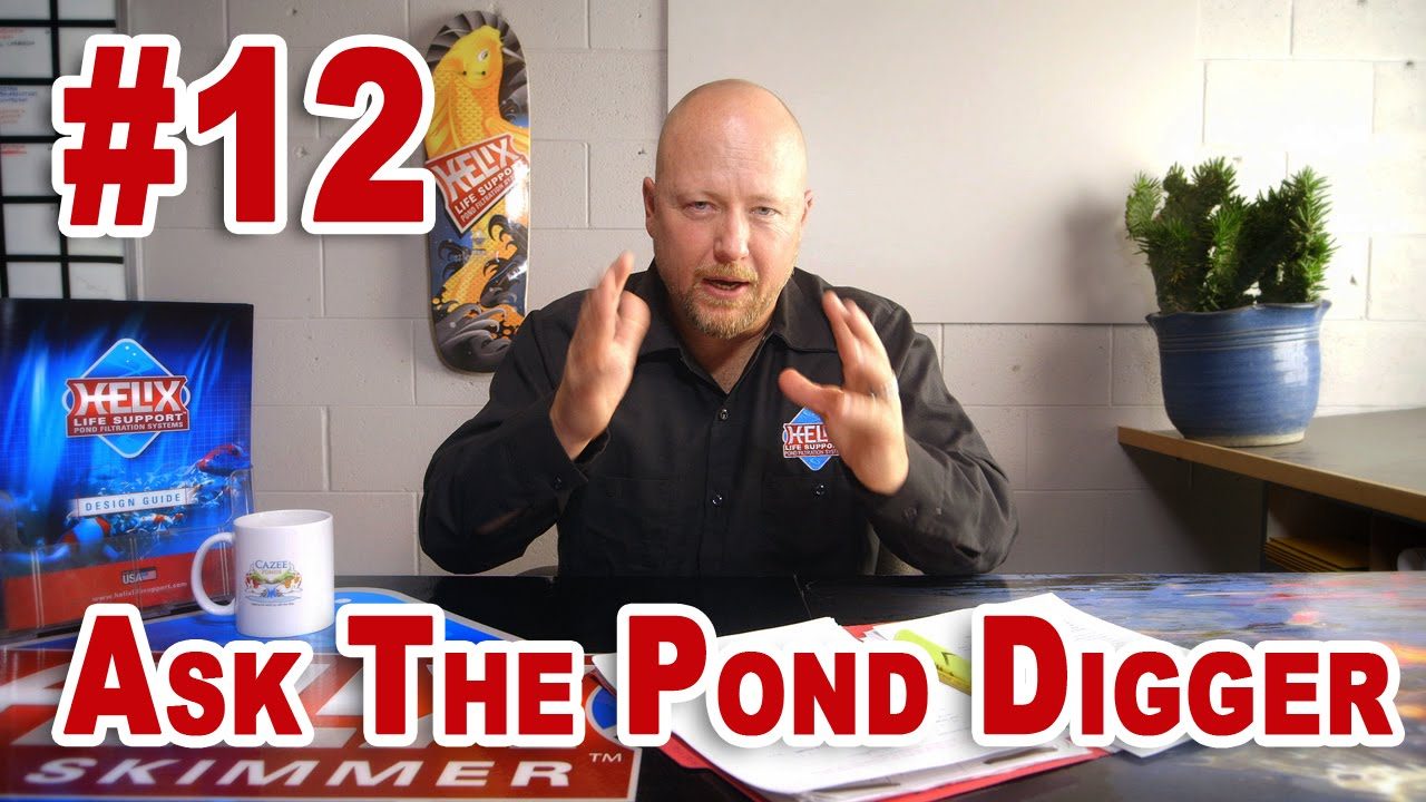 New pond start up pond size safety ask t p d show 12 for What size pond pump do i need