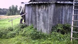 Белые ночи почтальона Алексея Тряпицына, 2014   Кино   Первый канал