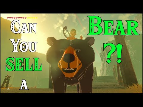 Can You SELL a BEAR?! Teddy Bear in Zelda Breath of the Wild
