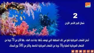 أجمل وأغرب 7 أماكن في عالم البحار.. أحدها جنة تحت الماء