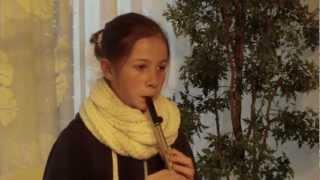Titanic - My heart will go on - (penny) Tin Whistle - Notes in discreption!!!
