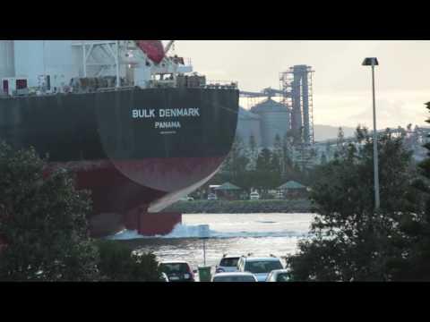 Ship Bulk Denmark Panama IMO9445772