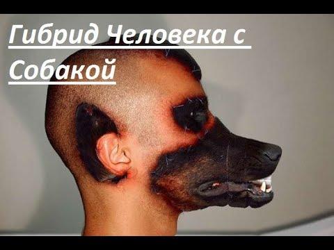 Человек-Пёс. Человек который пересадил себе лицо собаки! история ужасающей операции