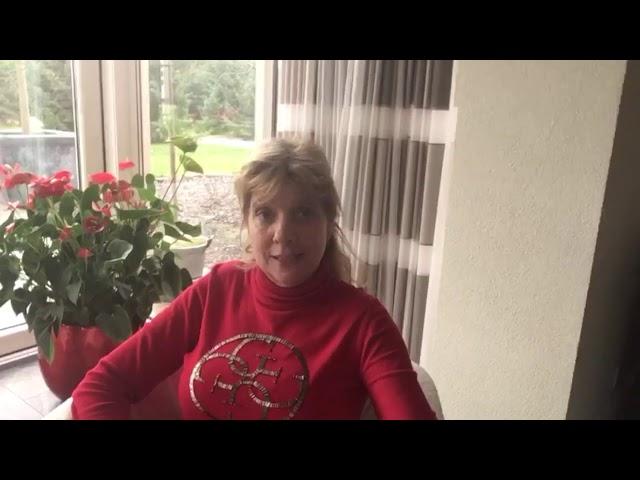 Hoe verzorg ik mijn gras in de winter? | Lepona Tuinarrangeurs