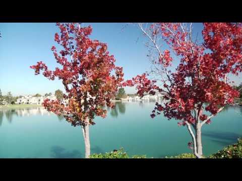 Irvine, California Community Tour in HD