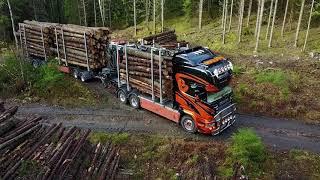Timmerbil Scania