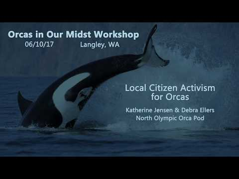 Orcas in Our Midst Workshop #3 - Local Citizen Activism for Orcas