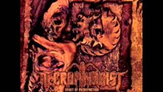 Necrophagist - Fermented Offal Discharge (Solo)