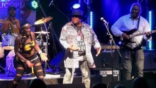 Kanda Bongo Man @Cornucopia Festival 2016(BURTON CONSTABLE HALL)