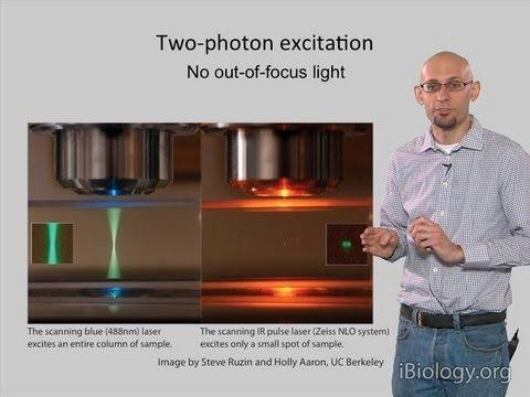 Microscopy: Two Photon Microscopy (Kurt Thorn)