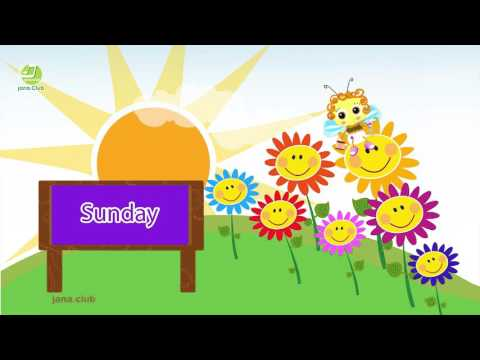Days of the Week song kids  English  French  Arabic