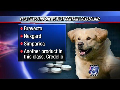 FDA: Flea, Tick Pills Can Cause Neurological Problems In Pets